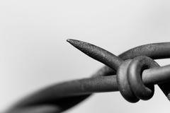 Macro abstracta del alambre de púas Foto de archivo libre de regalías