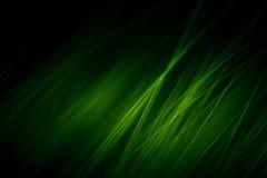 Macro abstrato da pele em tons verdes Fotografia de Stock Royalty Free