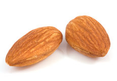 Macro almond Stock Photography