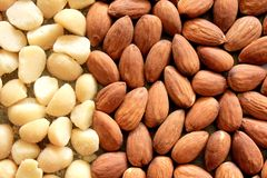 Macro Almonds and Macadamia Nuts 2 Royalty Free Stock Photo