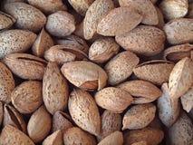 Fresh almonds with nutshells royalty free stock photo