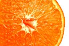 Macro anaranjada Fotografía de archivo