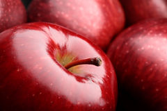 Macro apple. Close-up of a dark red apple between other apples Stock Image