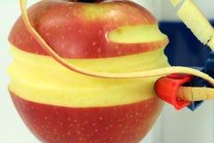Macro apple peeling Stock Image