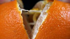 Macro arancio succosa del succo di flusso stock footage