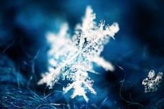 Macro background snowflake Stock Photo