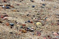 Macro bagnata della sabbia Fotografie Stock