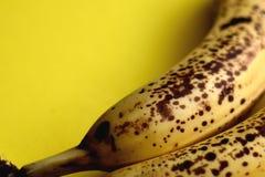 Macro banana gialla con gli spotts marroni fotografie stock libere da diritti