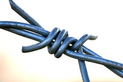 Macro of barbed wire Stock Photo