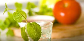 Macro basil. Macro shot on a fresh green basil spice Royalty Free Stock Images