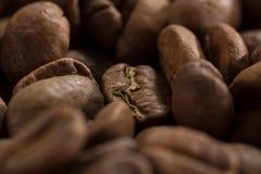 Macro beans black coffee, ready to brew delicious coffee Stock Image