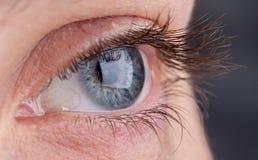 Macro of beautiful grey eye Royalty Free Stock Photography
