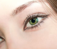 Macro beautiful young female eye Royalty Free Stock Images