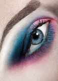 Macro beauty shot of woman eye Royalty Free Stock Photo
