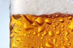 Macro bière Photographie stock libre de droits