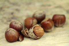 Macro from big hazelnuts Royalty Free Stock Photos