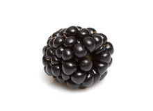 Macro Blackberry Royalty Free Stock Photo