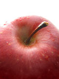 macro blanc rouge de pomme Photographie stock libre de droits