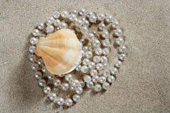 Macro blanca de la almeja del shell de la perla de la arena de la playa Imagenes de archivo