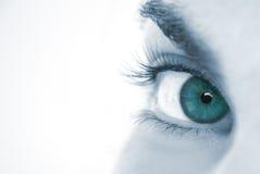 Macro blue eye of woman Royalty Free Stock Photo