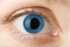 Macro of blue human eye Stock Images