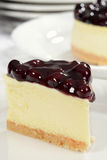 Macro blueberry cheesecake Royalty Free Stock Photos