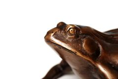 Macro of brass frog Royalty Free Stock Images