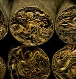 Macro of brown dry cigarettes or cigarillo as addiction concept Royalty Free Stock Photography