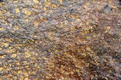 Macro Brown Rock Background Stock Photos