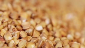 Macro Buckwheat stock video