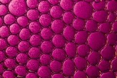 Macro bulles dans l'eau Image stock