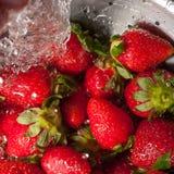 Macro c de las fresas que se lava Foto de archivo libre de regalías