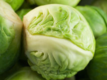 Macro cabbage. A macro shot of a small brussels cabbage Royalty Free Stock Images