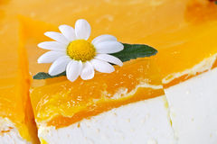 Macro Of Cake With Daisy Royalty Free Stock Photography