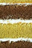 Macro of  cake layer for food backround Stock Photography