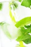 Macro calce della menta dei cubetti di ghiaccio della bevanda del fondo ghiacciato Fotografie Stock Libere da Diritti