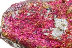 Macro calcopirite di pietra minerale nella roccia su un backgrou bianco Fotografia Stock Libera da Diritti