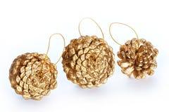 Macro chapeado ouro dos cones do pinho isolado Imagem de Stock