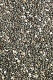 Macro chia seeds Stock Image