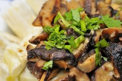 Macro of Chinese dish Royalty Free Stock Images