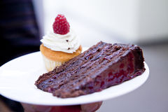 Macro of chocolate cake Royalty Free Stock Image
