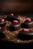 Macro chocolats Photo libre de droits