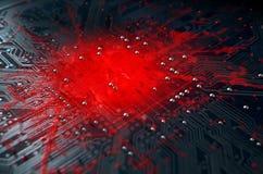 Macro Circuit Board Infection Stock Photos