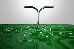 Macro circuito con la pianta futuristica Immagine Stock