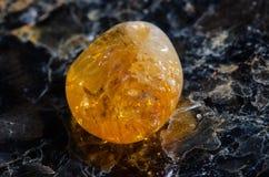 Macro citrino Imagens de Stock