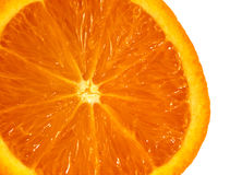 Macro citrus fruit Royalty Free Stock Photos