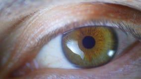 Macro clignotement masculin en gros plan d'oeil humain Mouvement lent banque de vidéos