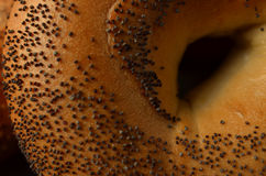 Macro close-up of center of poppy seed bagel royalty free stock photo