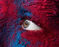 Macro and close-up creative make-up theme: Beautiful female eye with dry paint dust pigment on face, red and blue color royalty free stock image