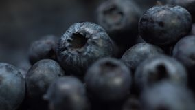 Macro close up of fresh tasty blueberry or delicious blueberries in the sunlight extreme close up. stock footage